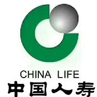 中国人寿保险股份有限公司田东分公司